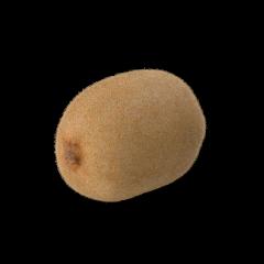 fruchtige Kiwi einzeln auf weißem Hintergrund