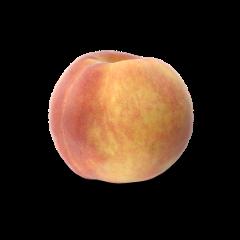 gelber Pfirsich auf weißem Hintergrund