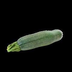 Zucchini liegend auf weißem Hintergrund